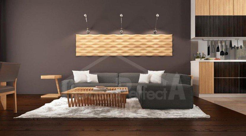 Proiect-casa-parter-261012-3