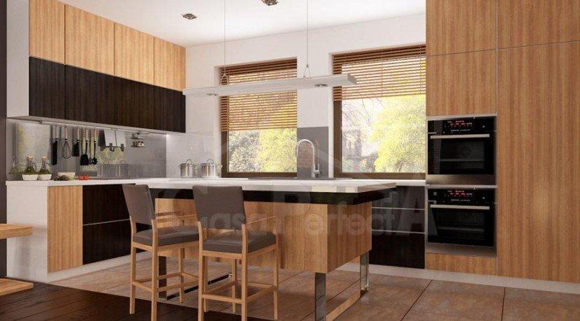Proiect-casa-parter-261012-6