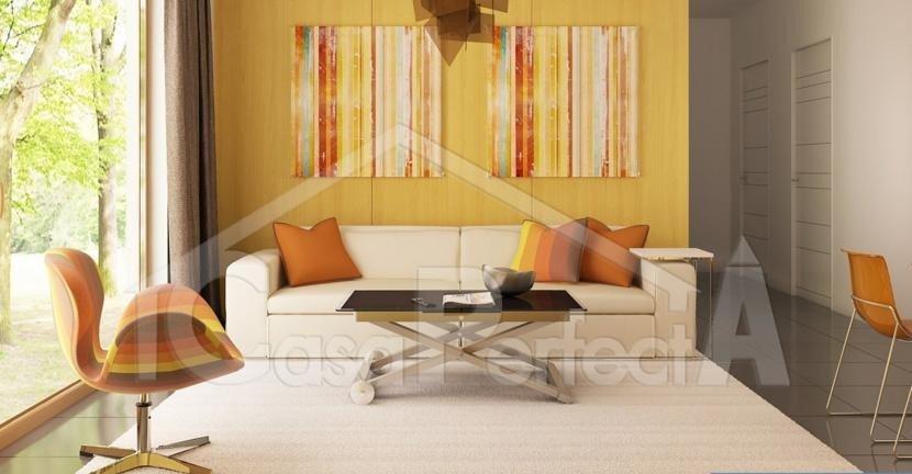 Proiect-casa-cu-mansarda-225012-