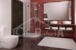 Proiect-casa-cu-Mansarda-66011-10