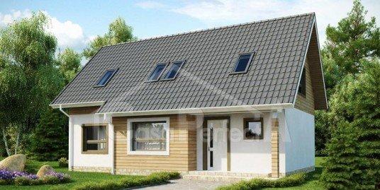 Proiect Casa A133
