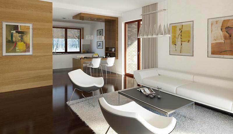 Proiect-de-casa-m11011-interior-2