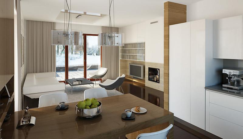 Proiect-de-casa-m11011-interior-6