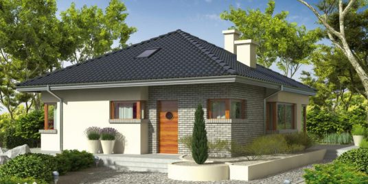 Proiect casa 101 mp